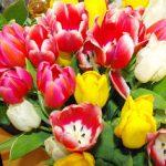 Floraprima – wie etwas Schönes wie ein Strauß Blumen für mich zum Alptraum wurde